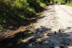 Hoene-Springs-Jefferson-County-Missouri-Private-Road-Asphalt-Overlay-1